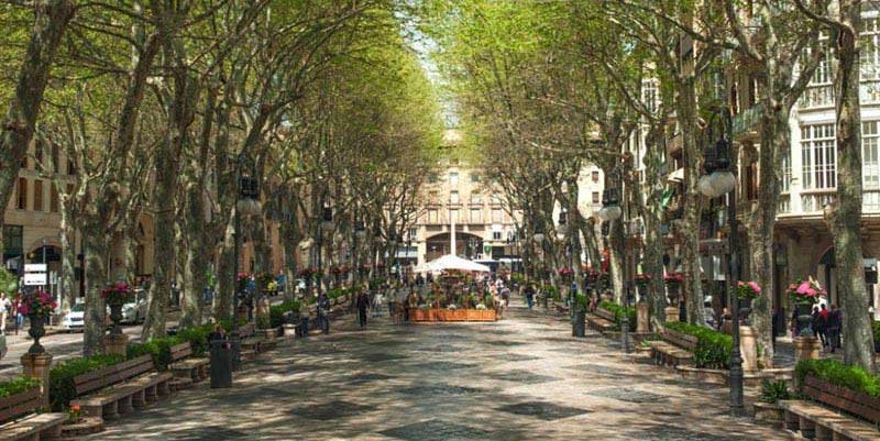eine-von-palmas-prachtvollen-einkaufsstrassen